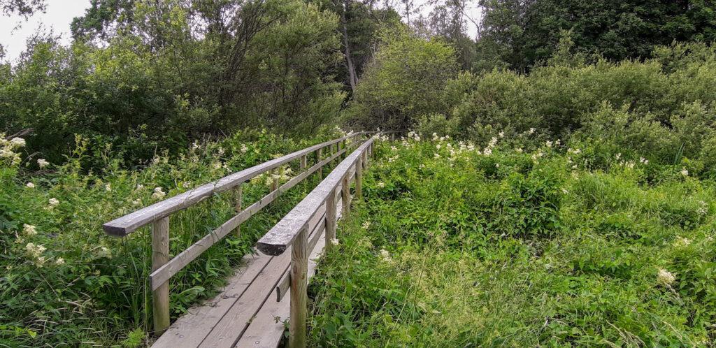 Podél řeky Vantaa