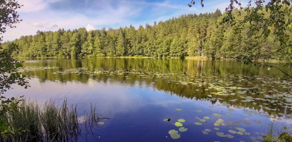 Nuuksio jezero